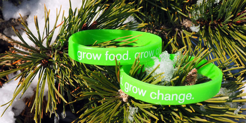 Grow Food Grow Change Pic