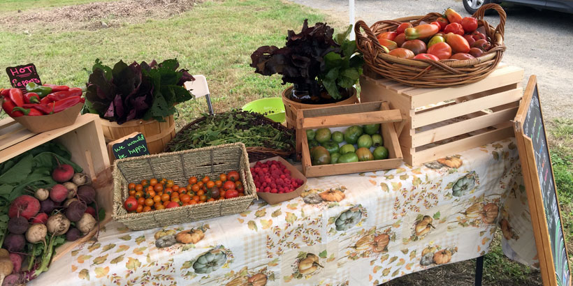 Farm Stand At DPUF W Headhouse